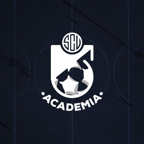 Academia S. C. Vianense